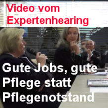 Video Expertenhearing